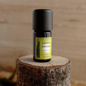 huile essentielle bio et locale origine Bretagne carotte sauvage