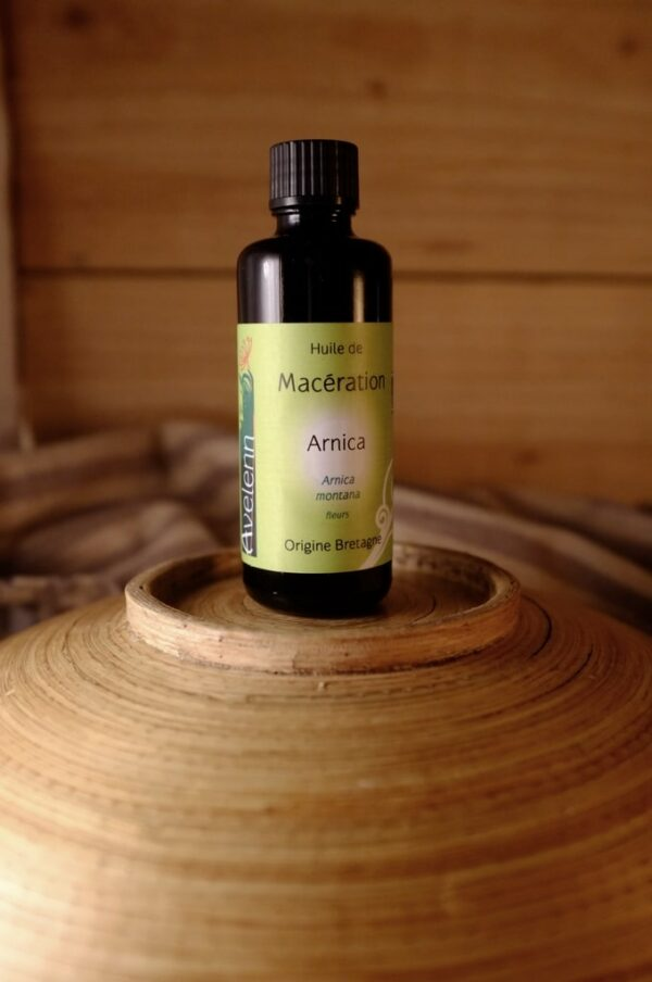 huile maceration arnica 600x904 - Huile de macération d' Arnica - 50 ml