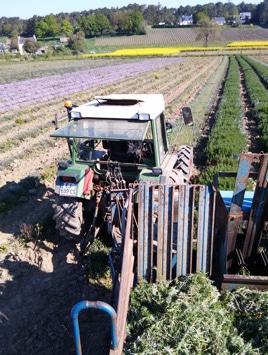 agriculture bio - Certification BIO
