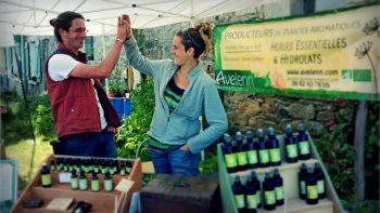 avelenn huiles essentielles bretonnes 7 350x197 - Accueil - Avelenn