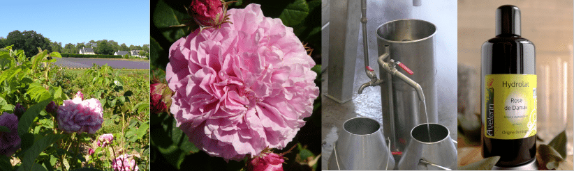 montage HA ros - Conserver un hydrolat au frigo?